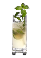 Virgin Mojita